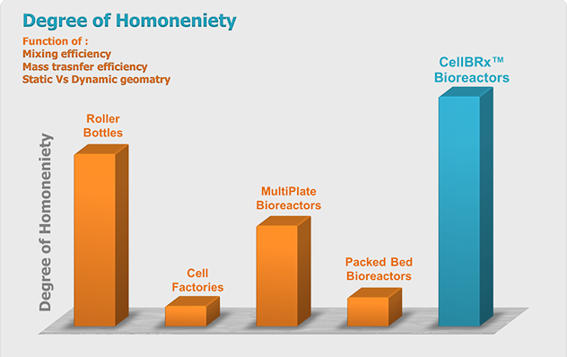 Degree of Homogeneity